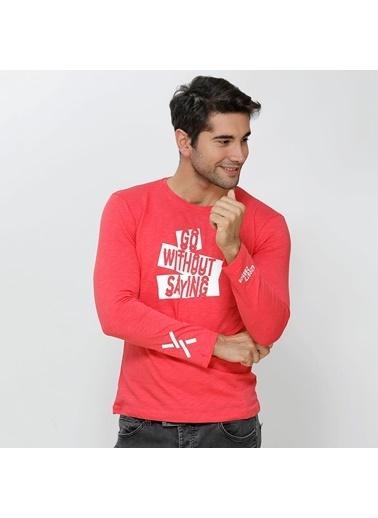Phazz Brand Sweatshirt Mercan